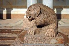 Peterhof, león del granito Foto de archivo libre de regalías