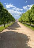 peterhof marli 3 pałacu. Obrazy Royalty Free