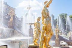 Peterhof Museum-reserv, berömd kaskad av guld- skulpturer för springbrunnfnd nära den Peterhof slotten Fotografering för Bildbyråer