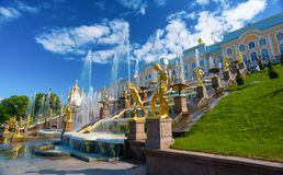 The Peterhof Museum Reserve. Stock Image