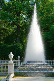 Peterhof one of the fountains of the Lower Park Royalty Free Stock Images
