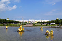 Peterhof pałac, święty Petersburg, Rosja Fotografia Royalty Free