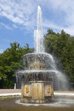 Peterhof Palace, Saint Petersburg, Russia. Fountain at the Peterhof Palace near St Petersburg Russian Federation Gulf of Finland Stock Image