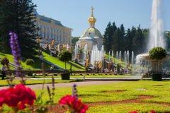 peterhof Przedmieście St Petersburg Zdjęcia Royalty Free