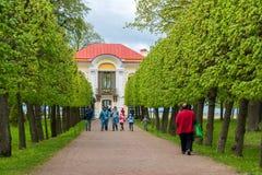 Peterhof Rosja, Czerwiec, - 03 2017 turyści wokoło pawilonu eremu i ulistnienie alei Obniżają parka Fotografia Stock