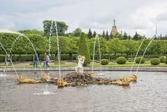 peterhof Rosja Dębowa fontanna Zdjęcia Royalty Free