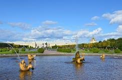 PETERHOF, ROSJA, WRZESIEŃ, 06, 2012 Rosyjska scena: ludzie chodzi blisko fontann w wierzchu parku Peterhof Zdjęcie Stock