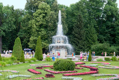Peterhof Rusia Gente cerca de Roman Fountain Fotos de archivo libres de regalías