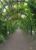 Peterhof, Rusland Berso in de Hoogste tuin Royalty-vrije Stock Foto's