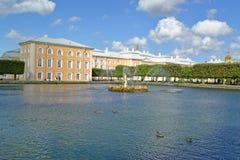 Peterhof, Rusland Een mening van fonteinen van Vierkante vijvers tegen het Grote Peterhof-Paleis Hoogste tuin Stock Afbeelding