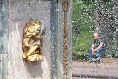 Peterhof Rusland Het Masker van Roman Fountain Stock Fotografie