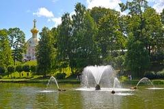 peterhof russia En sikt av valspringbrunnen i sanddammet Arkivbild