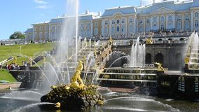 Peterhof, Russia, king's palace and fountain grand cascade, surroundings of St. Petersburg. stock video