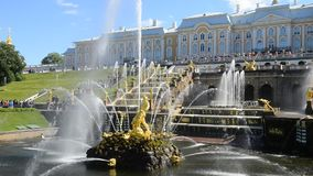Peterhof, Russia, king's palace and fountain grand cascade, surroundings of St. Petersburg. stock footage