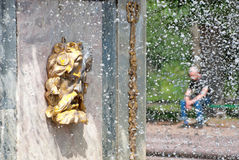 Peterhof. Russia. The Mask of The Roman Fountain Stock Photography