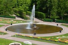 PETERHOF, RUSSIA-MAY 21: Fontanna w parku Petrodvorets Fotografia Stock