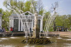 PETERHOF, RUSSIA-MAY 19: The fountain in park of Petrodvorets Royalty Free Stock Photo