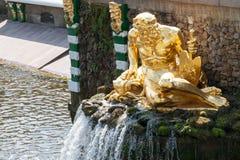 PETERHOF RUSSIA-MAY 14: Springbrunnar av den sjuka kaskaden parkerar in nolla Arkivfoto