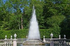 peterhof Russia Ostrosłup fontanna w lato słonecznym dniu Fotografia Royalty Free