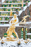Peterhof. Russia. The Samson Fountain Royalty Free Stock Photography
