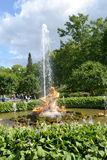 PETERHOF, RUSSIA. The Triton Who Is Breaking Off a Mouth to a Sea Monster fountain Hothouse Royalty Free Stock Photo