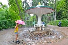 peterhof Russie La fille au sujet du biscuit de fontaine de parapluie en parc de Nizhny Photographie stock libre de droits