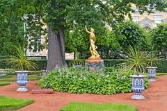 peterhof Russie La fontaine de Bell dans le jardin de Monplezirsky Photos libres de droits