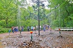 peterhof Russie Le parc inNizhny de biscuit de fontaine d'Oaklet Photos libres de droits