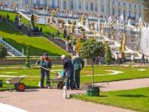 peterhof Russie Réparez le travail en parc de Peterhof Image libre de droits