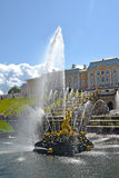 peterhof Russie Samson Who Is Tearing Apart une fontaine de Lion Mouth Abaissez le stationnement images libres de droits