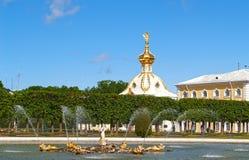 Peterhof, Russland Der Eichenbrunnen und der spezielle Lagerraum im Spitzengarten Lizenzfreie Stockfotos