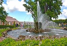 Peterhof, Russland Der Garbenbrunnen im Monplezirsky-Garten Lizenzfreies Stockbild