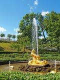 Peterhof, Russland Der Triton, der einen Mund zu einem Seeungeheuerbrunnen in Nizhny-Park auseinander reißt lizenzfreie stockfotos