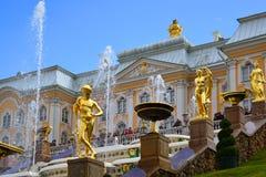 Peterhof Ryssland - Juni 03 2017 Guld- skulpturer av den stora kaskadspringbrunnen Royaltyfria Foton