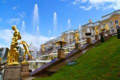 Peterhof Ryssland - Juni 03 2017 Guld- skulpturer av den stora kaskadspringbrunnen Royaltyfria Bilder
