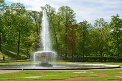 Peterhof Ryssland - Juni 03 2017 Stor italiensk springbrunn i stor förlust Arkivfoto