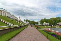 Peterhof Ryssland - Juni 03 2017 Stor kaskadspringbrunn framme av den stora slotten Royaltyfri Fotografi