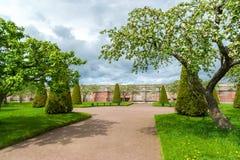 Peterhof Ryssland - Juni 03 2017 Trädgård av Venus och jordväggen i museumreserv Arkivfoto