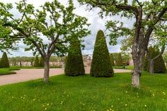 Peterhof Ryssland - Juni 03 2017 Trädgård av Venus och jordväggen i museumreserv Arkivbild