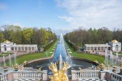 PETERHOF RYSSLAND - MAJ 10, 2015: Iconic sikt från den Peterhof slotten till kanalen och springbrunnar Royaltyfria Bilder