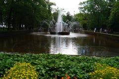 Peterhof ` s喷泉 免版税库存照片