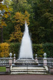 Peterhof`s Pyramid Fountain. The Pyramid Fountain on the grounds of Peterhof, Peter the Great`s summer residence outside of St. Petersburg Russia. The foreground Royalty Free Stock Images