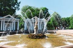 Peterhof, St Petersburg, Rússia - 27 de julho de 2017 Imagem de Stock