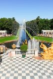 Peterhoff Palace Fountain. Peterhof, the Summer Palace. Looking down upon the channel and the powerful fountains with Samson Stock Photography