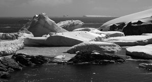 Petermann Island - Antarctica. Black and white of icebergs close to shore on Petermann Island, Antarctica royalty free stock image