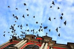 petersburg Стоковая Фотография RF