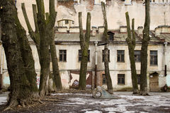 Petersburg abandoned courtyard with truncated trees Stock Images