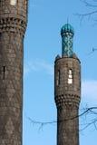 petersburg för domkyrkaminaretmoské st Royaltyfria Bilder