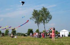 Petersburg Rosja, Czerwiec, - 26, 2016: Kania festiwal w miasteczku Pushkin Zdjęcia Royalty Free
