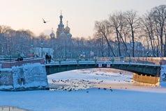 petersburg russia saint Royaltyfri Fotografi